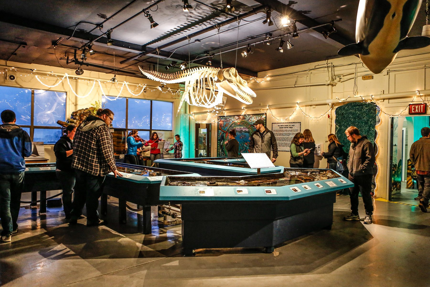 Visit | Sitka Sound Science Center - Sitka Sound Science Center